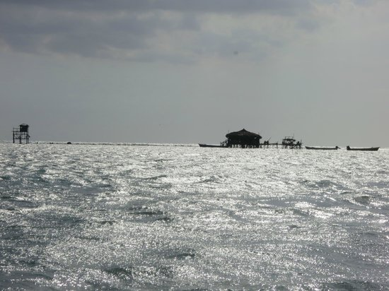 Floyd's Pelican Bar : From a distance