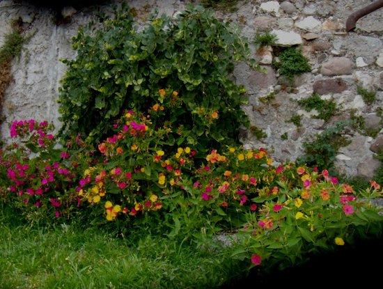 B&B 3 Sorelle: giardino