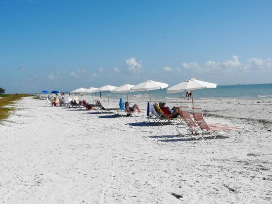 Song of the Sea: beautiful peaceful beach!
