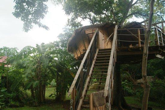 Habitation Getz: vue cabane