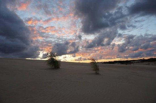 Jockey's Ridge State Park : Beautiful place to enjoy wonderful sunsets.