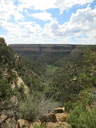 Petroglyph Point Hike: View from train into the valley
