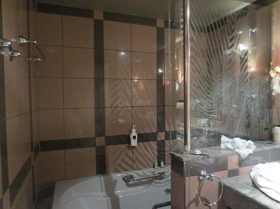 Asam Stadthotel: bagno