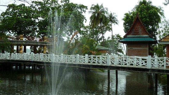 Chang Park Resort & Spa: Территория отеля (мостик над прудом с фонтанами)