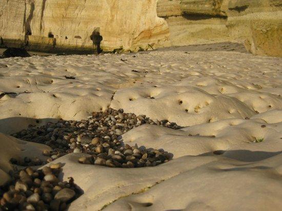 Falaise d'Etretat: Морское дно на удаленном пляже во время отлива