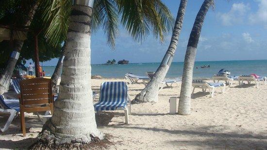 Cocoplum Beach Hotel : Playa del hotel