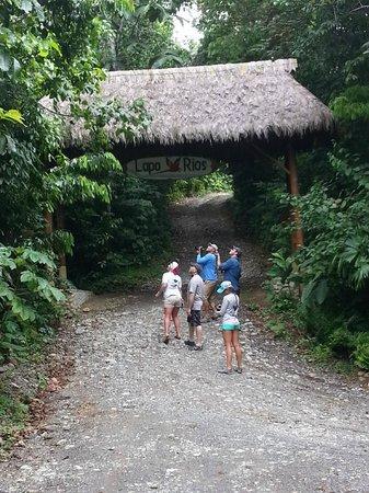 Crocodile Bay Resort : Monkey Tour with Dennis