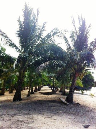 Ambulong Bluewater: beach area