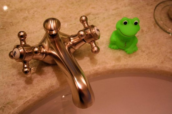 Hotel München Palace: Froggy waits sink-side