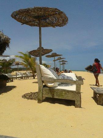 Praia dos Coqueiros: barraca local - UXUA PRAIA BAR