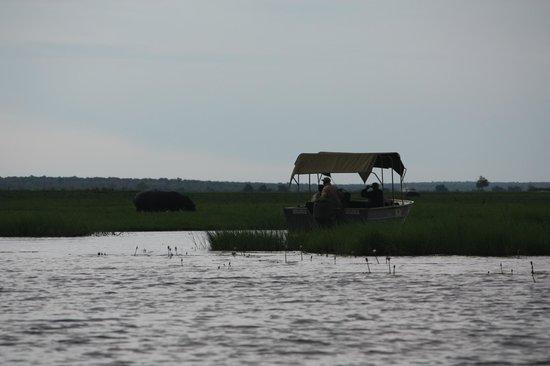 Sanctuary Chobe Chilwero : river