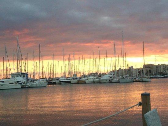 Darsena : rodeado de veleros, se aprecian unas bonitas puestas de sol sentado desde su terraza