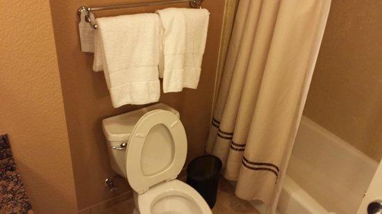 Embassy Suites by Hilton Orlando Lake Buena Vista South : Bathroom.