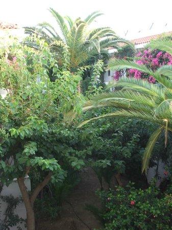 Marino's Beach Hotel Apartments: Буйная растительность внутреннего дворика