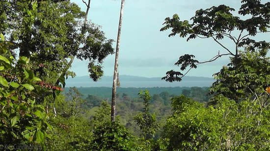 Rambala Jungle Lodge : The view from the main house