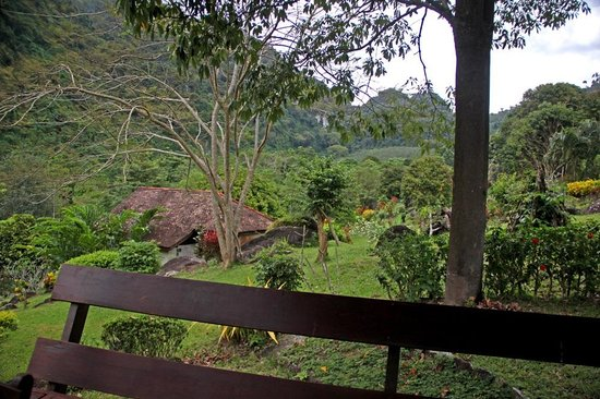 Phanom Bencha Mountain Resort: View from the porch of Bungalow #4