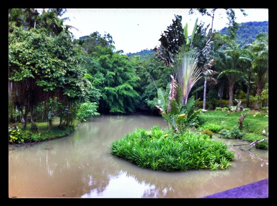 Phanom Bencha Mountain Resort: View of the pond from the restaurant