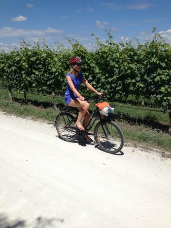Mon Logis Bed and Breakfast: on yer bike vineyard tours a good option while staying here
