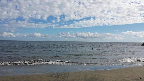 Apartamentos Flipper: local beach