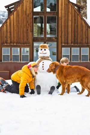 The Porches: Build a snowman or come play with the dogs