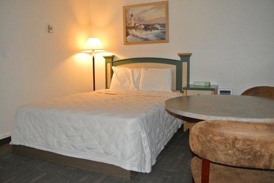City Center Motel: Queen bed