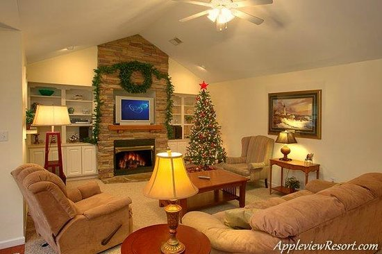 Appleview River Resort: Living Area B309