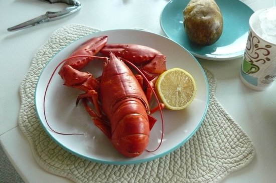 Quahog Bay Inn in Harpswell, Maine: Fresh lobster from the dock!