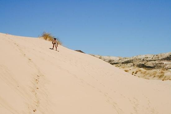 """Witsand Nature Reserve : """"Surfing the dunes"""""""