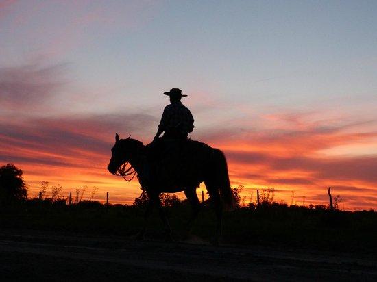 Ecoposada del Estero: local gaucho going home