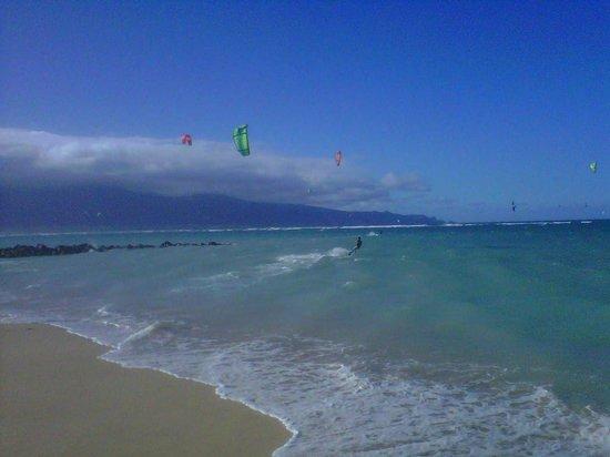 Action Sports Maui: Kite Beach