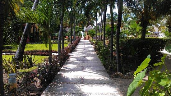 Nautibeach Condos : Walkway in front of Nautibeach