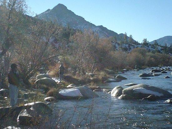 The Kern Lodge: kern river fishing