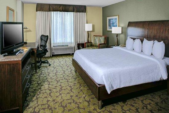 Hilton Garden Inn Atlanta North/Alpharetta: Accessible King Guest Room