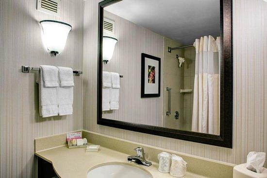 Hilton Garden Inn Atlanta North/Alpharetta: Guest Bathroom