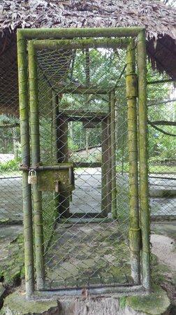 Quistacocha Zoo: Eingang zum Bogel-Käfig
