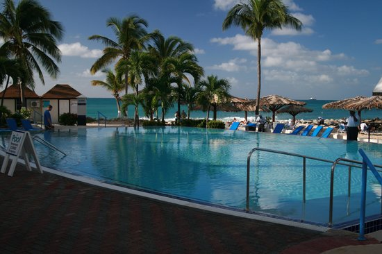 Flamingo Beach Resort : Pool with beach in background