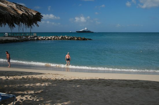 Flamingo Beach Resort : Flamingo beach