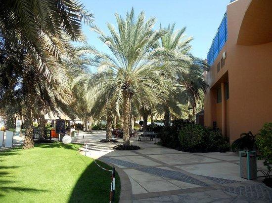 Sheraton Abu Dhabi Hotel & Resort: Teil des Gartenbereiches