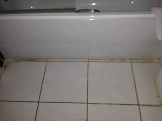 Norfolk Hotel: Bathroom