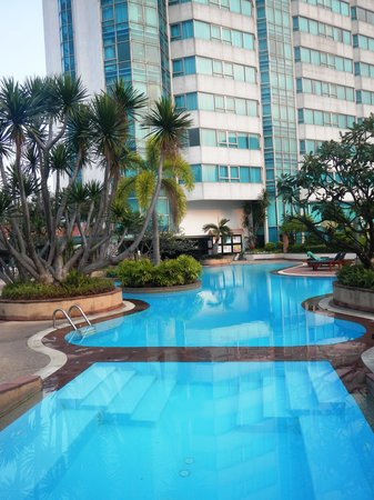 Hotel Windsor Suites and Convention: pool