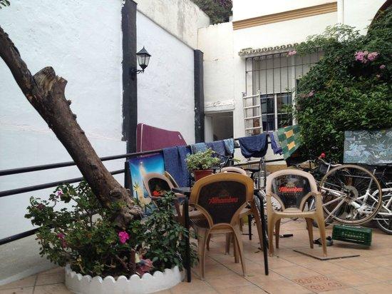Casa Babylon Backpackers : garden