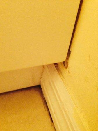 Morritt's Tortuga Club & Resort: mold around cabinet in bathroom
