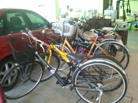 Dozy House: bicycles for rent