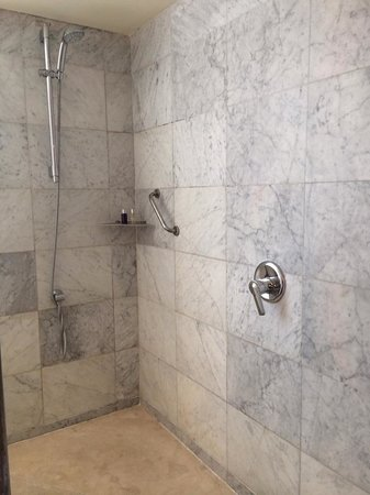 Gran Hotel Torre Catalunya: walk in shower