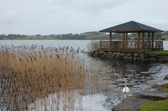 Wineport Lodge: Lough Ree