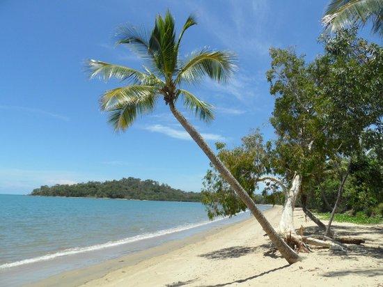 Kewarra Beach Resort & Spa: Wunderschöner Strand (leider nicht zum Baden!)