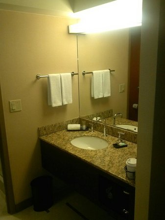 Hyatt Regency DFW: Bathroom Sink Area