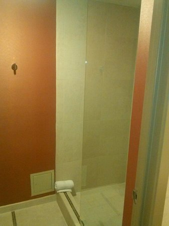 Hyatt Regency DFW: Glass Shower Doors