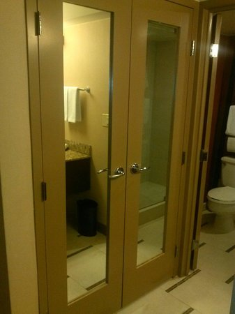Hyatt Regency DFW: Mirrored Closet