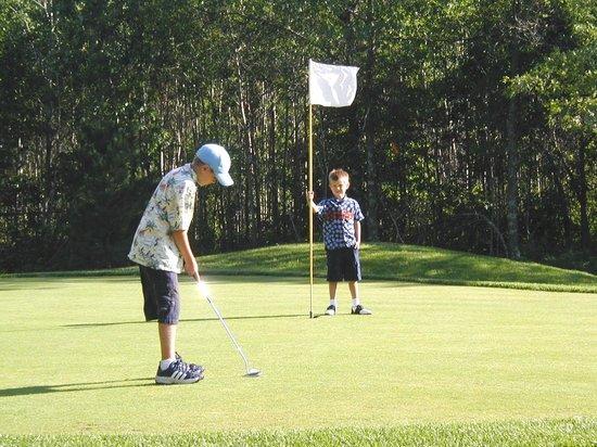 Wildwedge Golf, Mini Golf and Maze: Golf